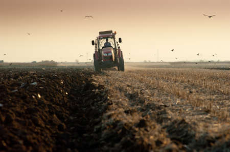 Red Tractor Plowing in dusk photo