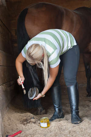 A woman cleans a hoof of horse photo