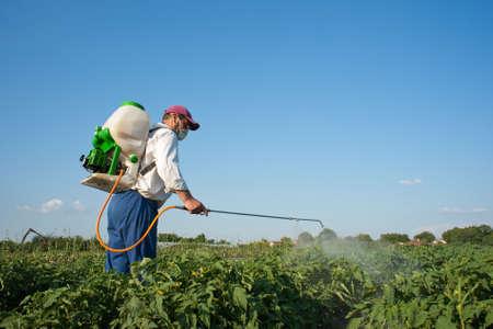 sprayer: Man spraying vegetables in the garden Stock Photo