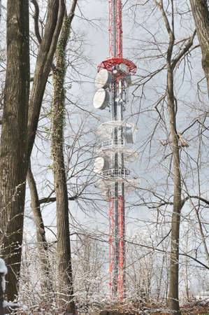 television transmitter in the forest landscape photo