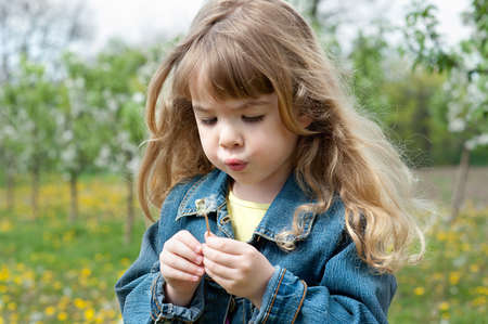 Cute little girl with dandelion photo