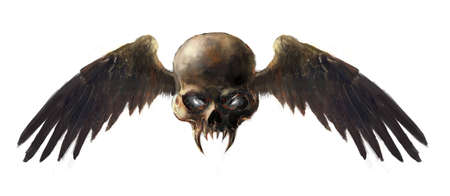 doom: illustration skull with the wings