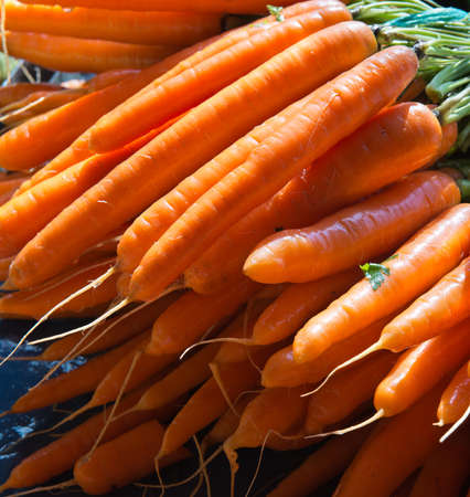 agri: vegetables fres carrots ready for sale