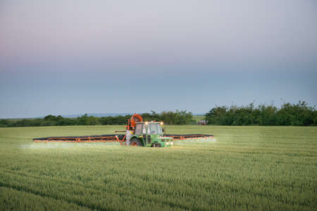 agriculture machinery: Tractor spraying wheat in the spring
