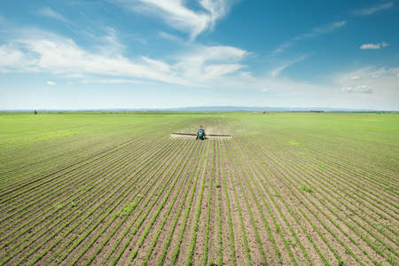 agriculture industry: Tractor spraying soy in the spring
