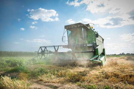 agriculture industry:  combine working on the Wheat field