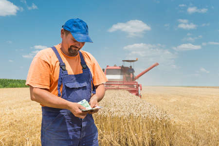 combine harvester: happy farmer during harvest wheat