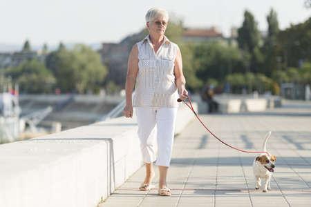 pampered pets: Senior woman walking her dog Stock Photo