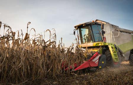 combine harvester: Combine harvesting crop corn grain fields