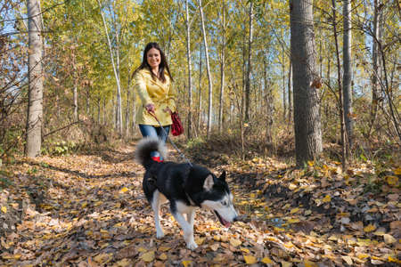 Girl with her dog walking Stock Photo - 23263788