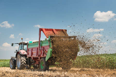 Manure spreader working in field of harvested wheat