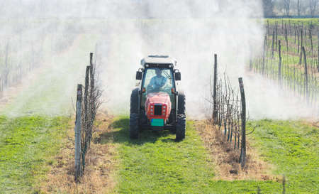 spraying apple orchard in spring photo