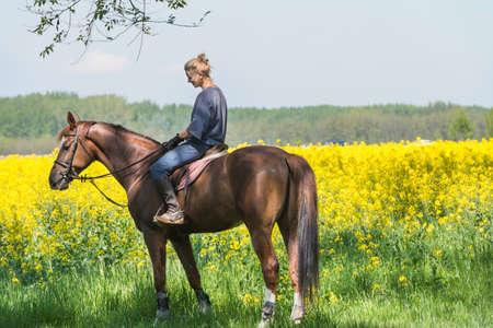 horseback:  young girl on horseback riding Stock Photo