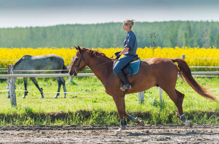 adult rape: Young woman riding a horse