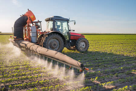 tractor spraying pesticides on soy bean Stock fotó - 28637105