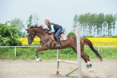 oilseed rape: Young girl jumping with horse
