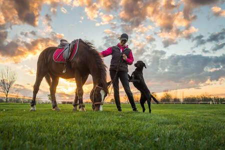 femme et cheval: Fille et le cheval au coucher du soleil Banque d'images