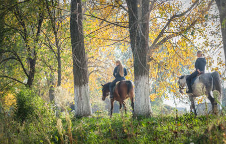 Girls  riding a horse on autumn forest