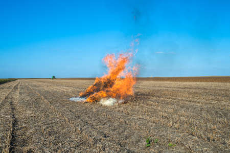 ignited: Burning straw in a field