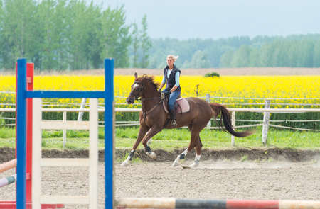 adult rape: Young girl jumping with horse