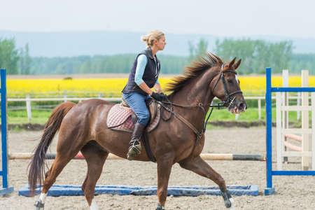 jumping fence: Niña saltando con caballo