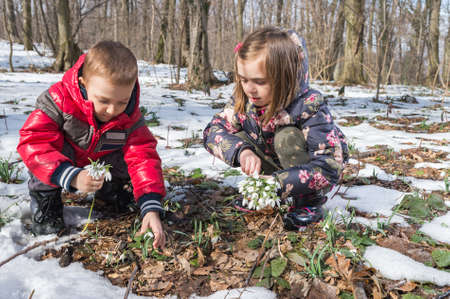 snow flowers: Boy and girl picking flowers of spring Stock Photo