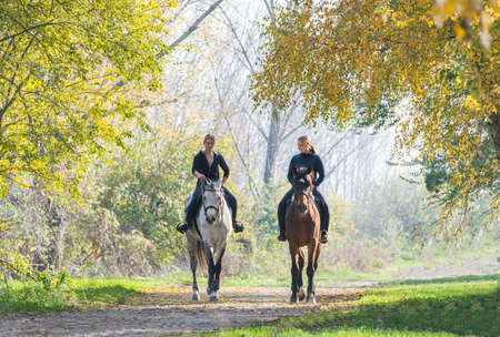 riding horse: Girls  riding a horse on autumn forest