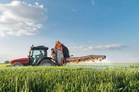 pulverizador: Tractor fumigación de trigo en primavera Foto de archivo