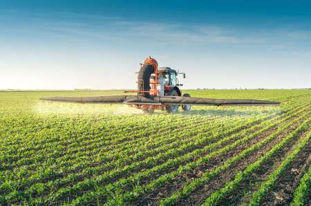 agricultura: tractor de fumigaci�n de pesticidas en la soja Foto de archivo