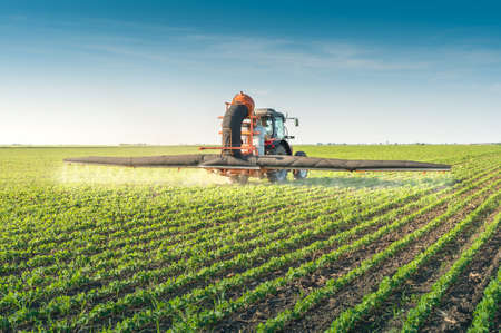 agriculture machinery: tractor spraying pesticides on soy bean