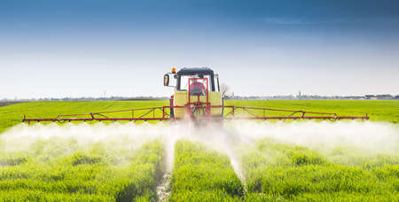 pesticides: Tractor spraying wheat field with sprayer