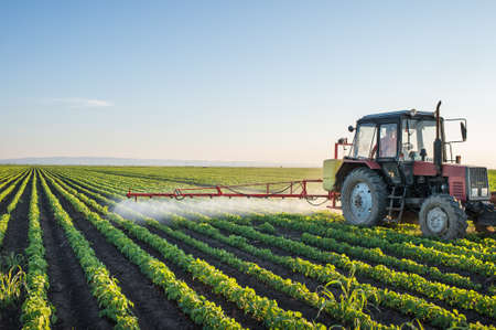 farm machinery: Tractor spraying soybean field at spring Stock Photo
