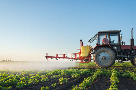 spraying: Tractor spraying soybean field at spring Stock Photo