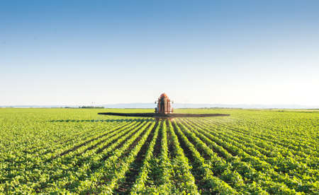 farm machinery: Tractor spraying soybean field Stock Photo