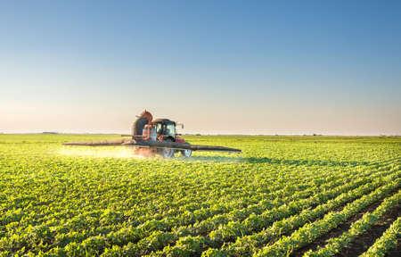 sorgo: Tractor fumigaci�n campo de soja