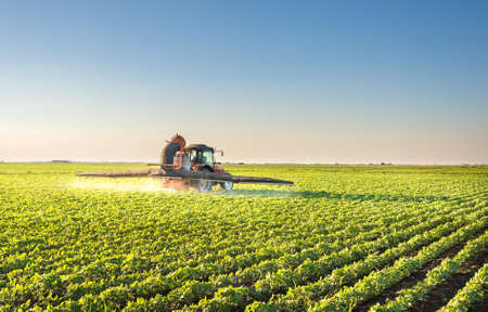 blue sky and fields: Tractor spraying soybean field Stock Photo