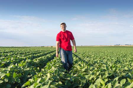 ダイズ圃場で若い農夫