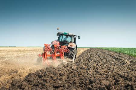 field crop: Tractor plowing the stubble field