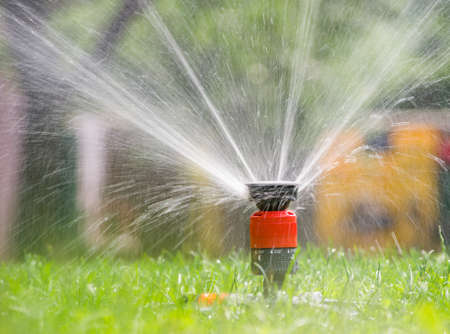 sprinkler: Sprinkler head spraying water on green lawn