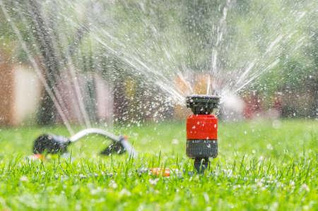 Sprinkler head spraying water on green lawn