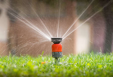 grass: Sprinkler head spraying water on green lawn