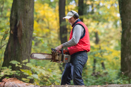 wood cutter: Man cutting a branch with chainsaw