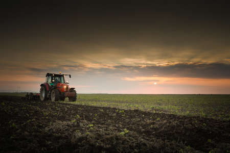 industrialized: Tractor plowing a field at dusk