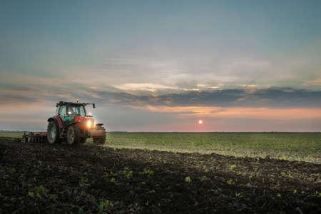 arando: Tractor arando un campo al atardecer