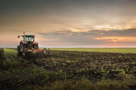 granja: Tractor arando un campo al atardecer