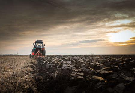 arando: Tractor de campo arado al atardecer