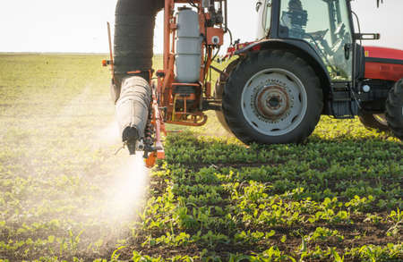 agriculture machinery: Tractor spraying pesticides on soy bean Stock Photo