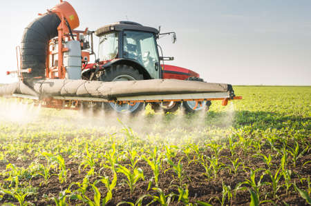 crop sprayer: Tractor spraying pesticides on soy bean Stock Photo