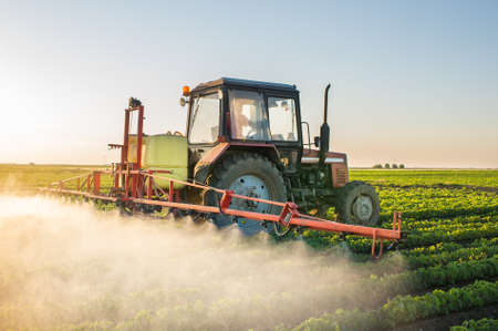 a crop: Tractor spraying soybean field at spring Stock Photo