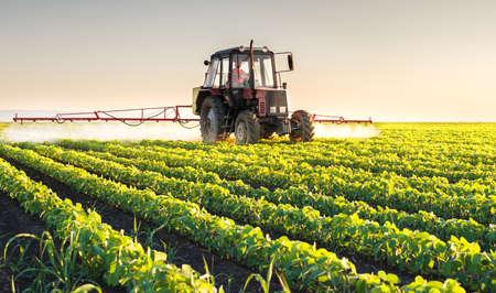 Tractor spraying soybean field at spring Foto de archivo